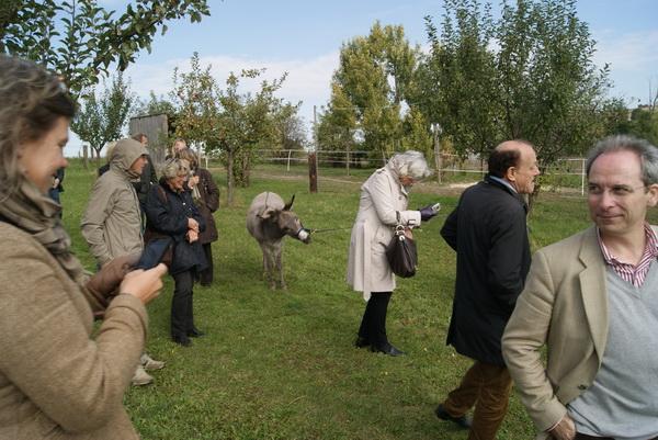 Wein4tler-Bauerngarten Parbus