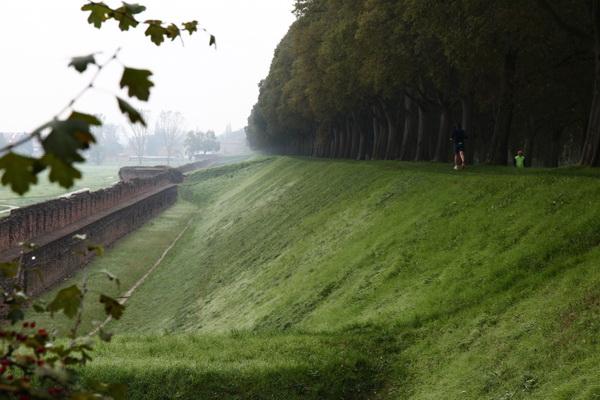Emilia-Romagna13